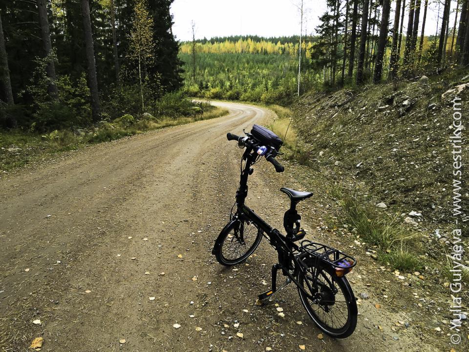 folding-bikes-332
