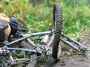 vosmerka na kolese gornogo velosipeda