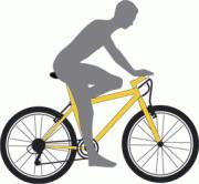 pravilnoe polojenie sedla velosipeda