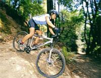 Горные велосипеды XC райдер