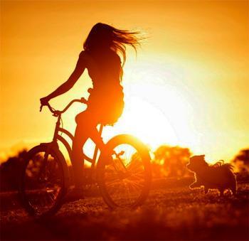 чем женские велосипеды отличаются от мужских