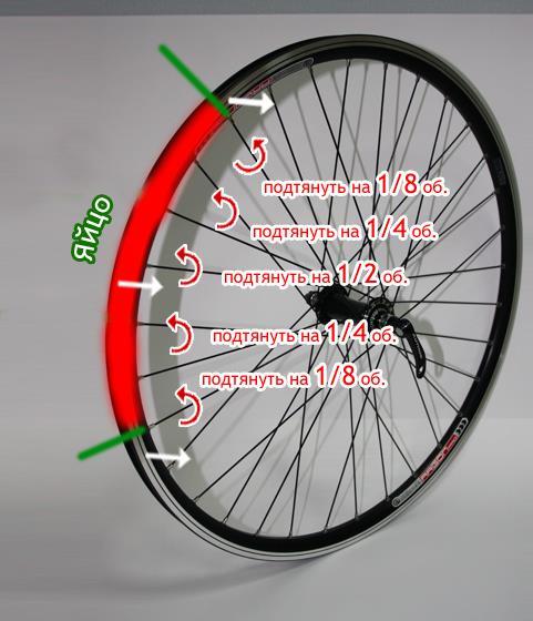 яйцо на колесе велосипеда