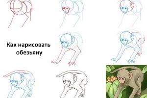 http://kvartira-bez-agenta.ru/poshagovaya-instrukciya/