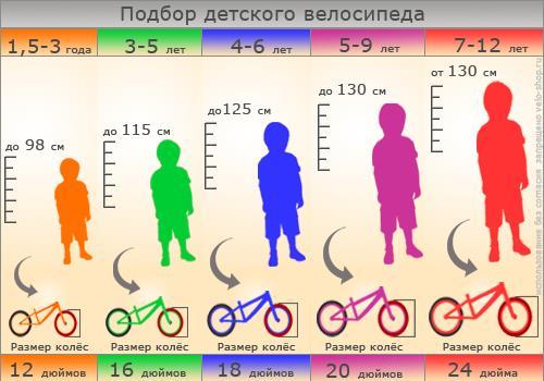 podbor_detskogo_velosipeda