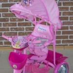 Трехколесный велосипед Принцесса 108S2C