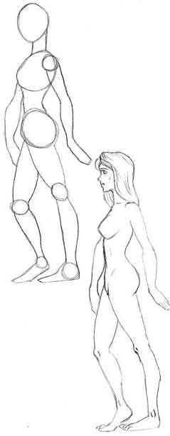 Как поэтапно рисовать женщину?