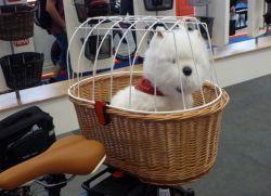 корзина для собаки на велосипед