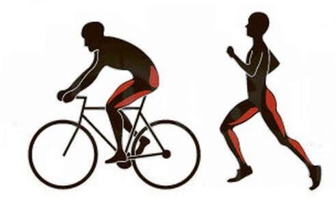 что полезнее бег или езда на велосипеде