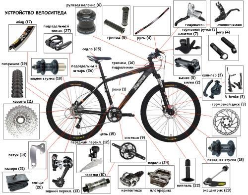 Что необходимо знать при аренде. Устройство велосипеда