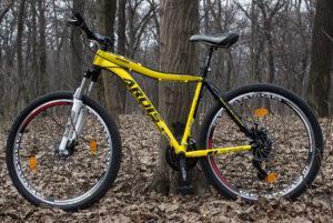 bike ardis