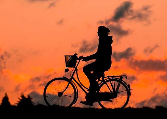 Мальчик на велосипеде для читательского дневника