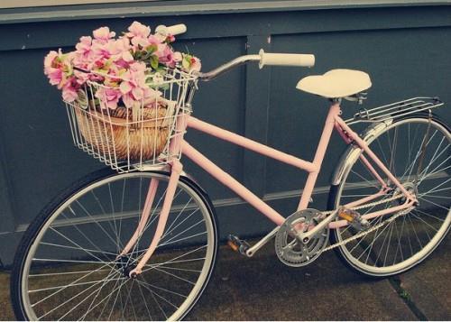 как выбрать велосипед для женщины фото