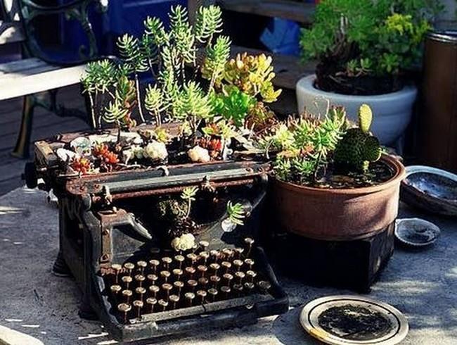 Клумба из пишущей машинки фото