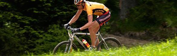 как выбрать велосипед хардтейл