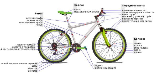 Подробное строение велосипеда