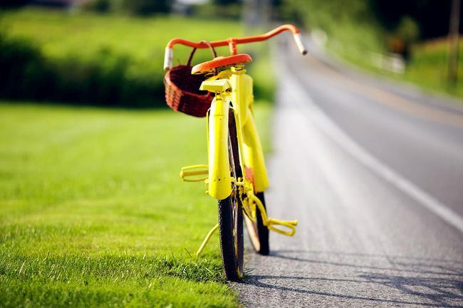 Польза велосипеда для женщин - Зрение