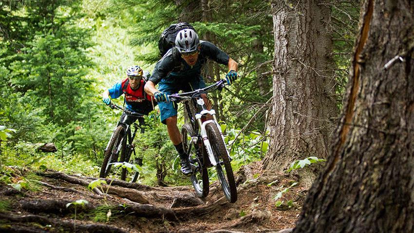 Рейтинг лучших горных велосипедов