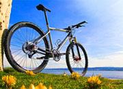 vibor gornogo velosipeda