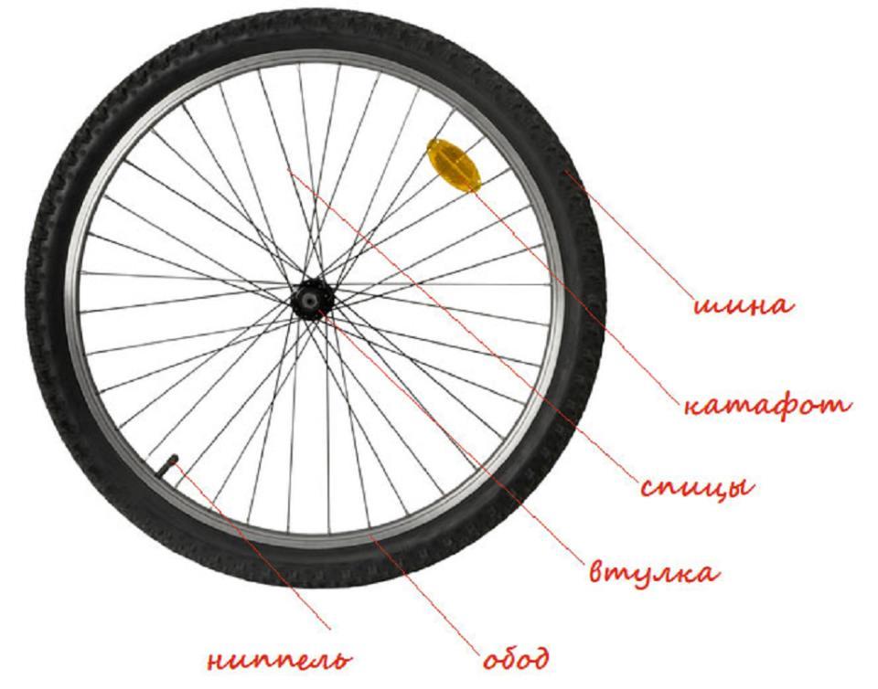 Строение колеса с подписями
