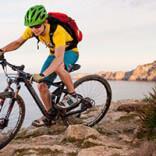 кому подойдет велосипед бергамот (bergamont): цена, отзывы, основные характеристики